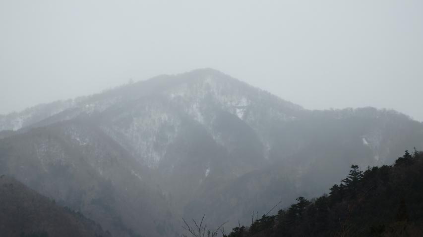カスミのように煙っているのは雪が降っているから