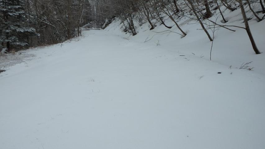 一面の積雪