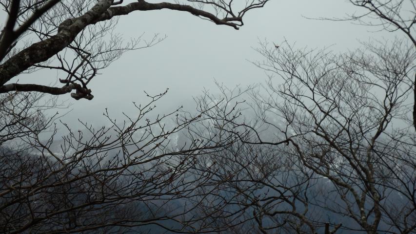 剣山方面は雲の中