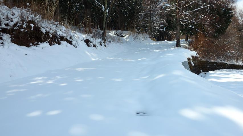 ここから雪が深い