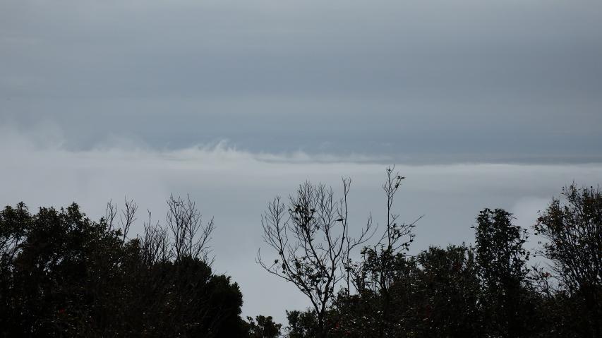 雲海っぽい