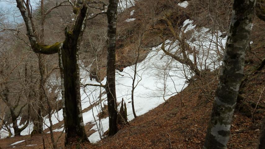 南高城と高城山の鞍部の東側谷には遅くまで雪が残る