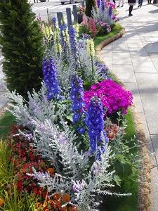 派手な花壇