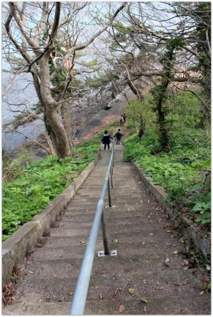 青森県 青森市 観光 浅虫 湯の島 カタクリ 祭り 写真
