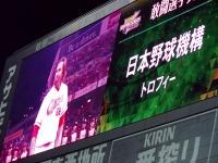 16.10.29 エル受賞