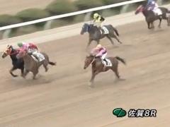20170226 佐賀8R C1 ダノンラブリー 04
