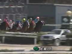 20170312 佐賀1R C2 オウケンボクサー 初勝利 01