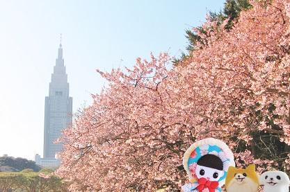 エンパイアーステイトビルと寒桜
