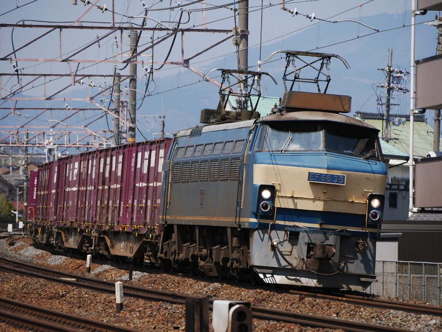 EF66 36 20170404