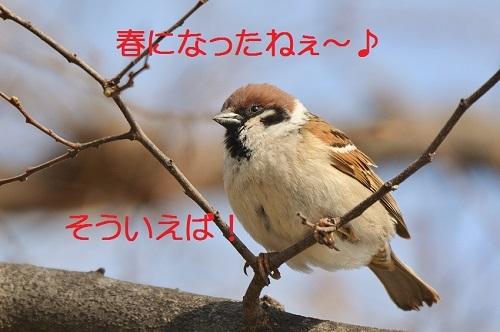 010_20170404192146af9.jpg