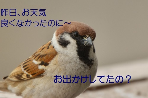 010_201704272055017d0.jpg