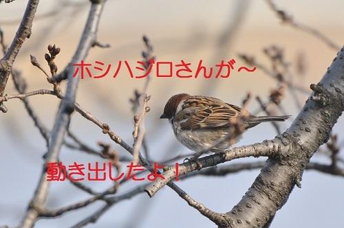 020_201703281942041a7.jpg