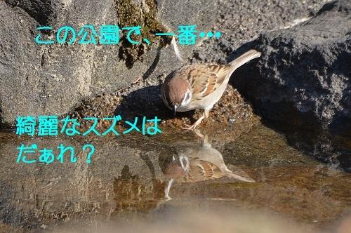 020_201704031953468bd.jpg
