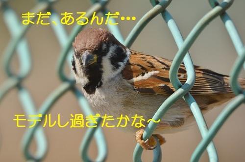 020_2017042019143665e.jpg