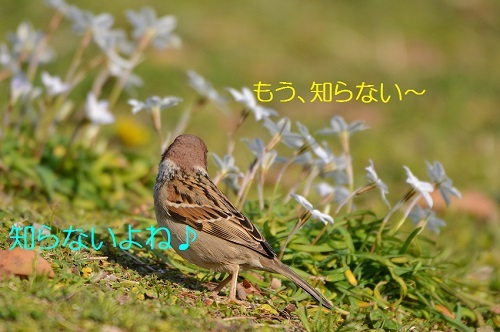 120_20170502171842ed3.jpg