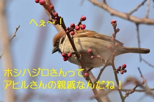 140_20170329193917e21.jpg