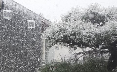 20170210_雪景色 (2)