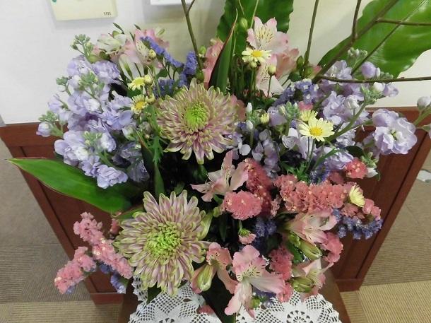 3/28の花