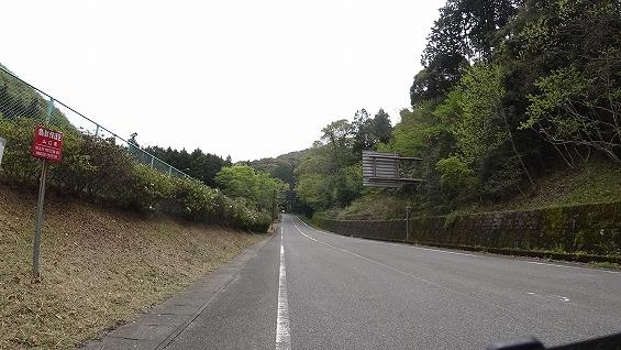 DSC01135.jpg