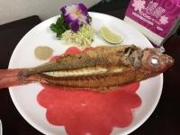 魚170427
