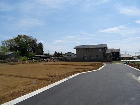 大角豆2011-10