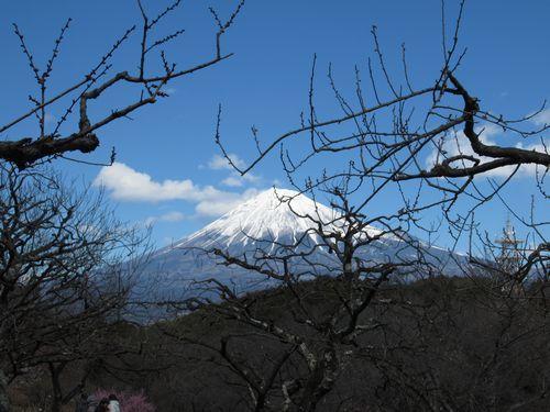 岩本公園8