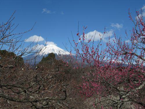 岩本公園10
