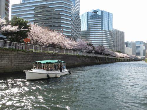 目黒川10