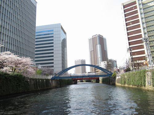 目黒川13