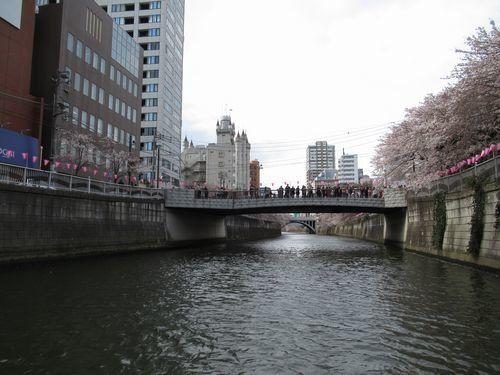 目黒川18