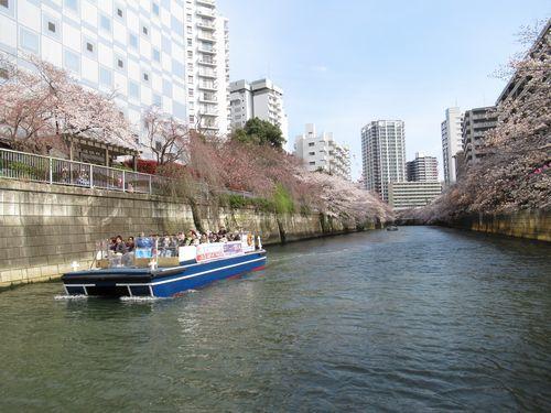 目黒川19