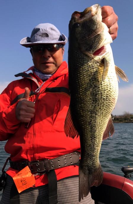 bass46450.jpg