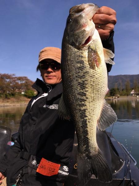 bass47.jpg