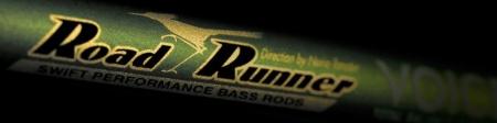 roadrunner_20170309181027482.jpg