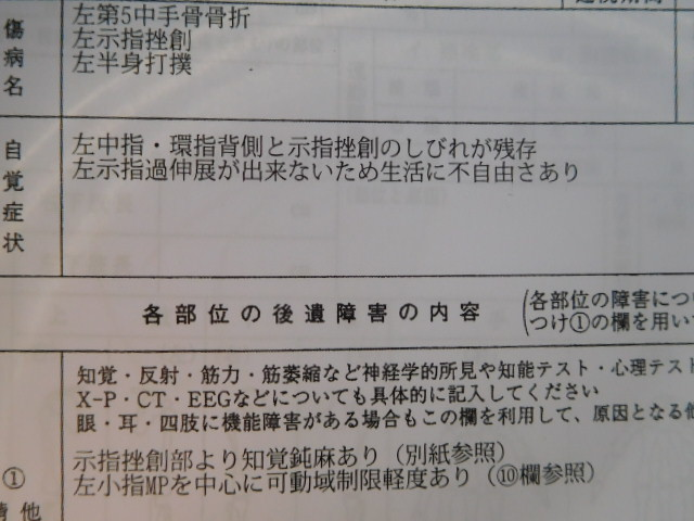 DSCN7484.jpg