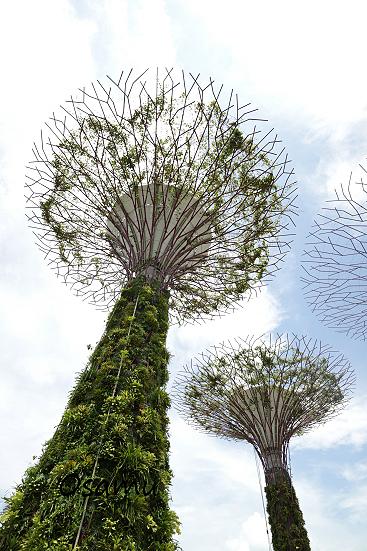 17-02-26_Singapore_02429.jpg