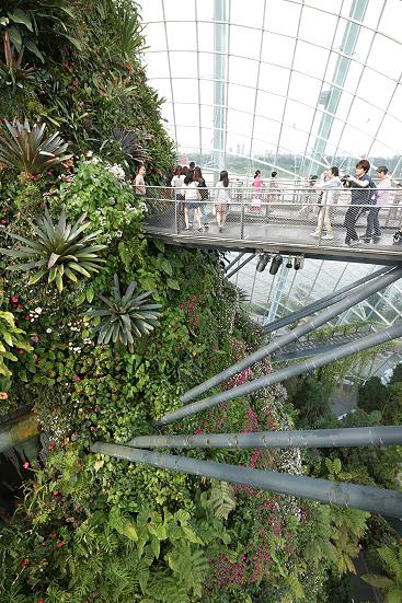 17-02-26_Singapore_02493.jpg