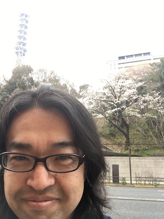 桜東京2017