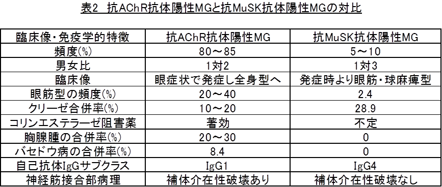 AChR抗体陽性重症筋無力症と抗MuSK抗体陽性重症筋無力症の対比