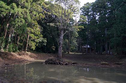 170222丸郷神社の神池④