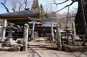 170404根古屋神社の欅⑫