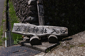 170419五柱神社大杉⑩