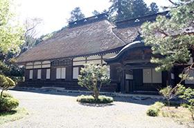 170419広徳寺タラヨウ⑤