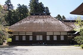 170419広徳寺のカヤ⑧
