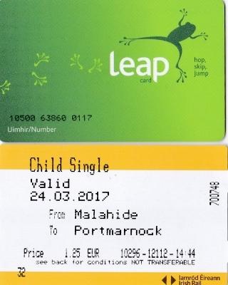 ㉙LEAP-CARD (320x400)