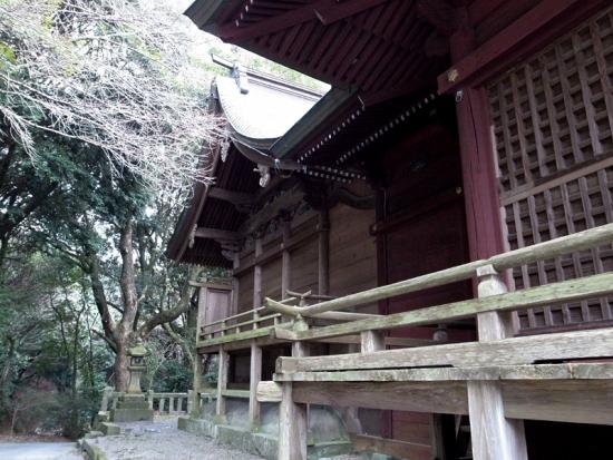170306_14愛宕神社横から