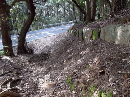 170313_09神籠石と車道3