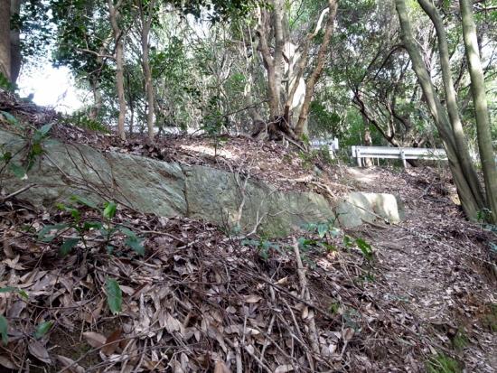 170313_11ガードレールと神籠石
