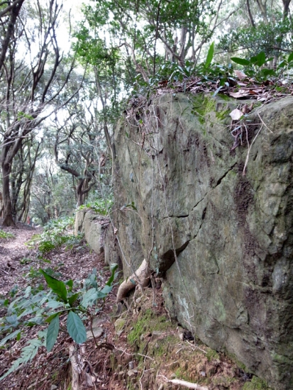 170313_12神籠石