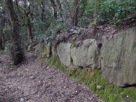 170313_07神籠石